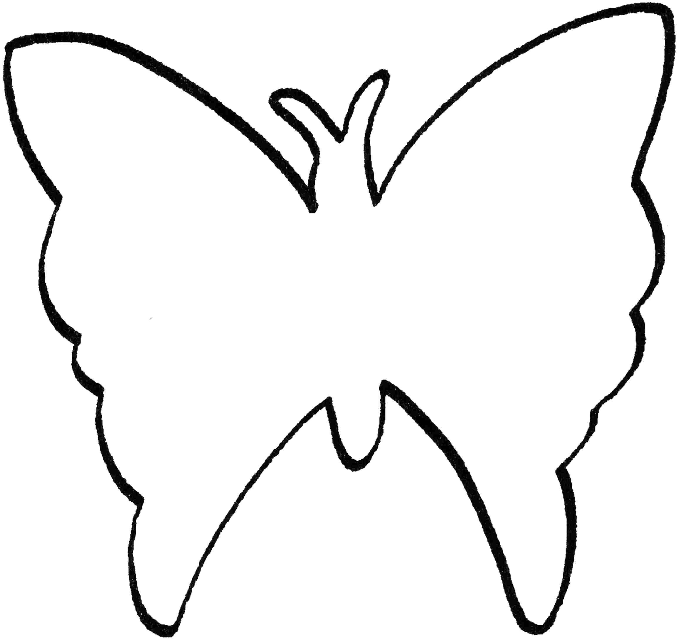 Раскраска Контур бабочки. Скачать бабочка.  Распечатать бабочка
