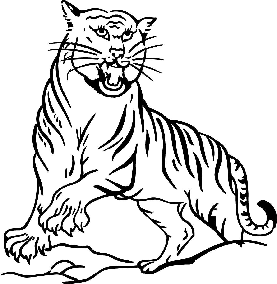 Раскраска тигр с когтями. Скачать Тигр.  Распечатать Дикие животные
