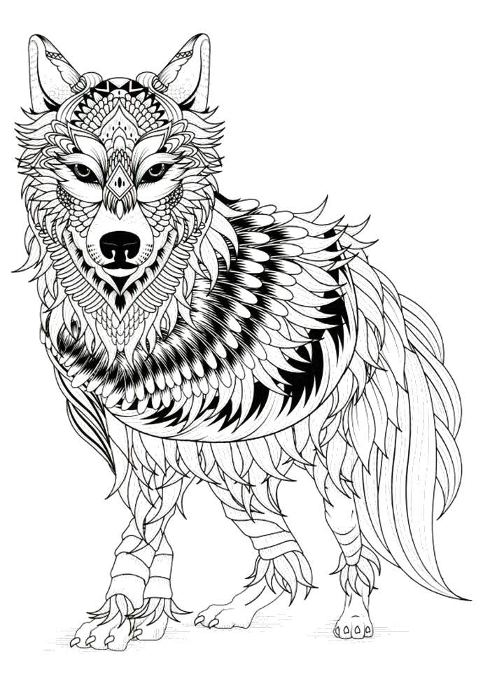Раскраска  антистресс волк. Скачать волк.  Распечатать Дикие животные