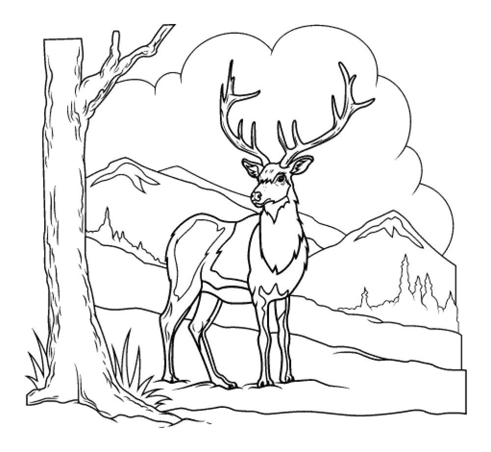 Раскраска  фоне  животные, природа, дикие животные, лесные животные,  олень, рогатый олень, горы . Скачать Олень.  Распечатать Дикие животные