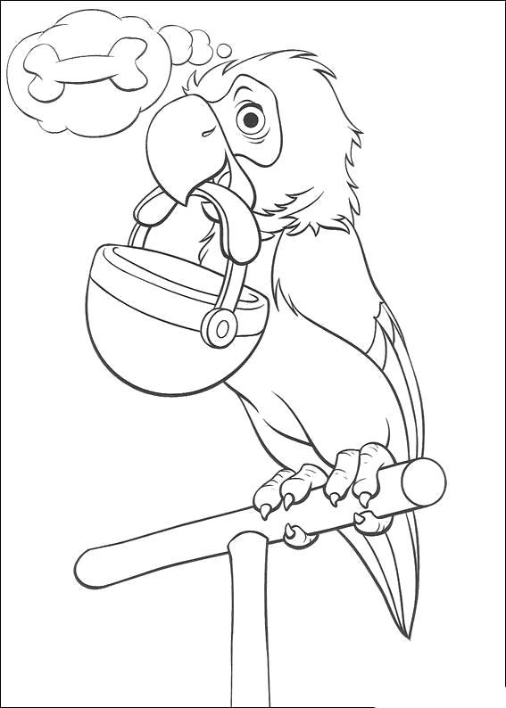 Раскраска  для детей - 101 далматинец, попугай, попугай держит кастрюлю. Скачать 101 далматинец.  Распечатать 101 далматинец