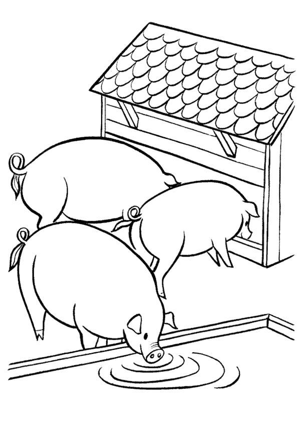 Раскраска В деревне у бабушки. . Скачать Свинья.  Распечатать Домашние животные