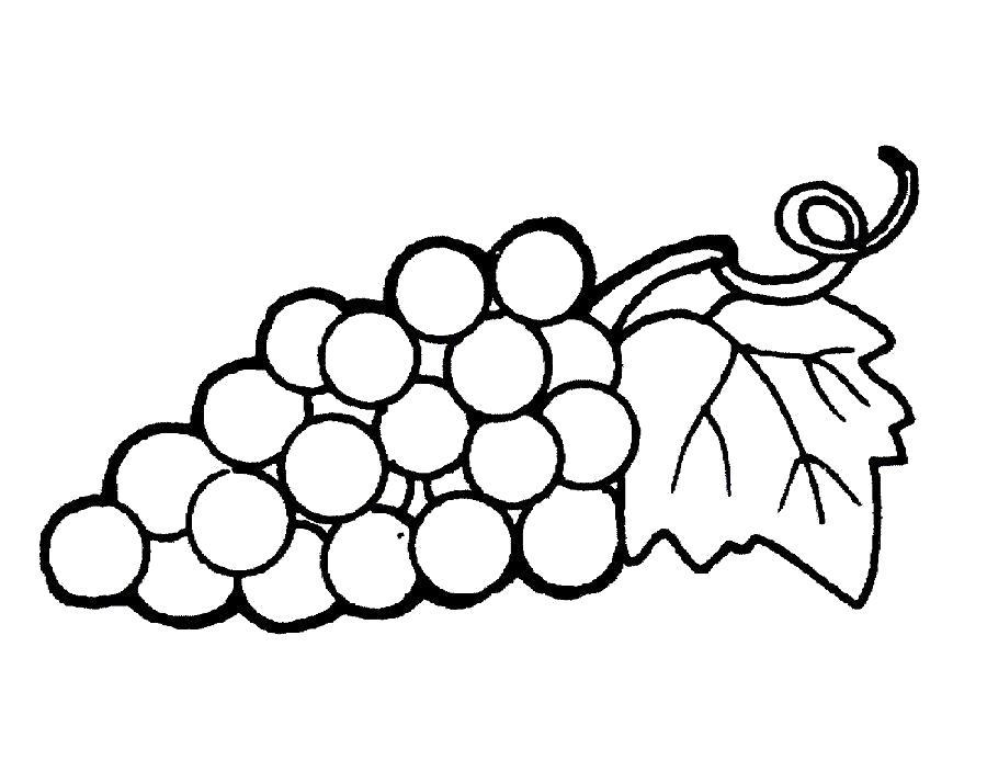 Раскраска  виноградины. Скачать виноград.  Распечатать ягоды
