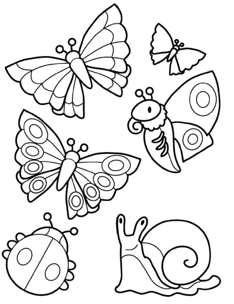 Раскраска  с насекомыми и улиткой. Улитка, Бабочка, мотылек, Божья коровка. Скачать Бабочки, Божья коровка.  Распечатать Насекомые