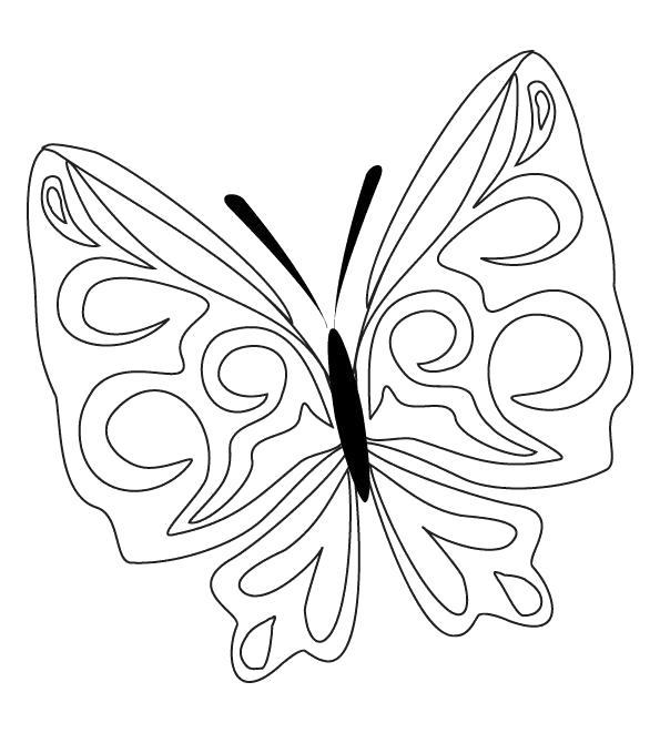 Раскраска узоры на крыльях у бабочки. Скачать Бабочки.  Распечатать Бабочки