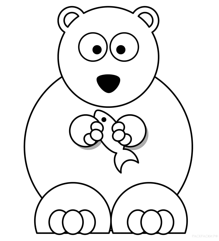 Раскраска  Животные Белый медведь с рыбкой. Скачать медведь.  Распечатать медведь