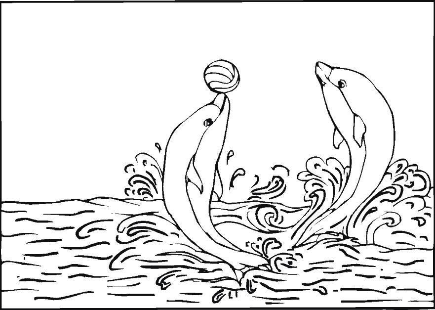 Раскраска Игра в мяч. дельфины играют. Скачать Дельфин.  Распечатать Морские животные