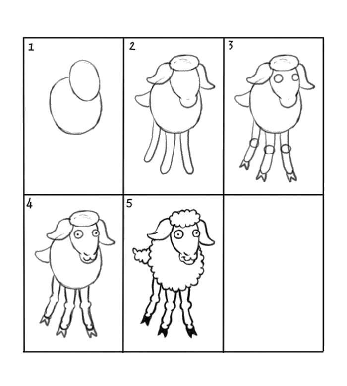 Раскраска Как нарисовать барашка схема . Скачать Как нарисовать.  Распечатать Как нарисовать