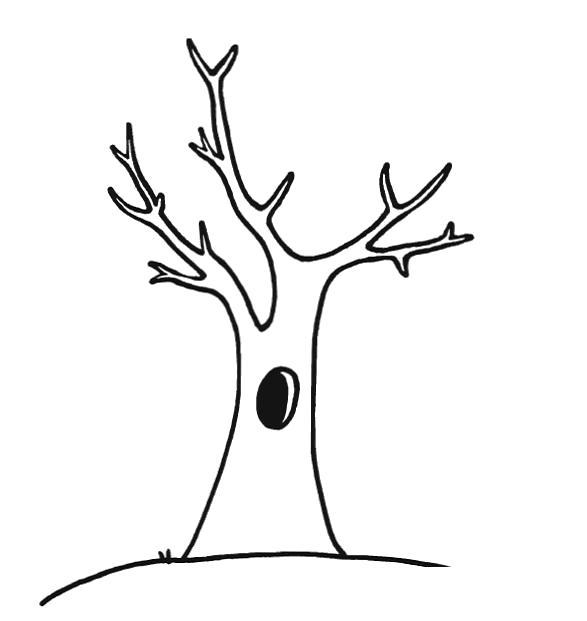 Раскраска  деревья  деревья,  природа,  малышам, дерево . Скачать дерево.  Распечатать растения