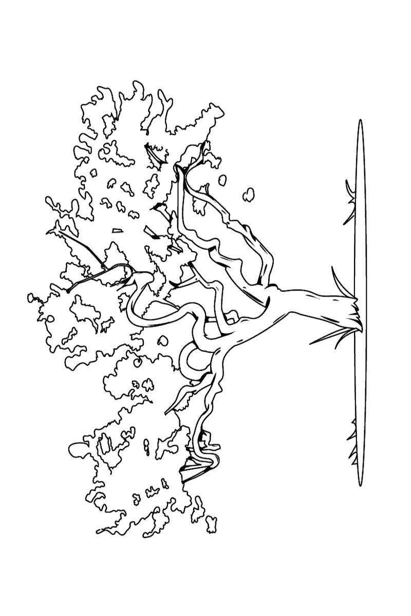 Название: Раскраска Раскраска карликовое дерево. Категория: деревья. Теги: деревья.