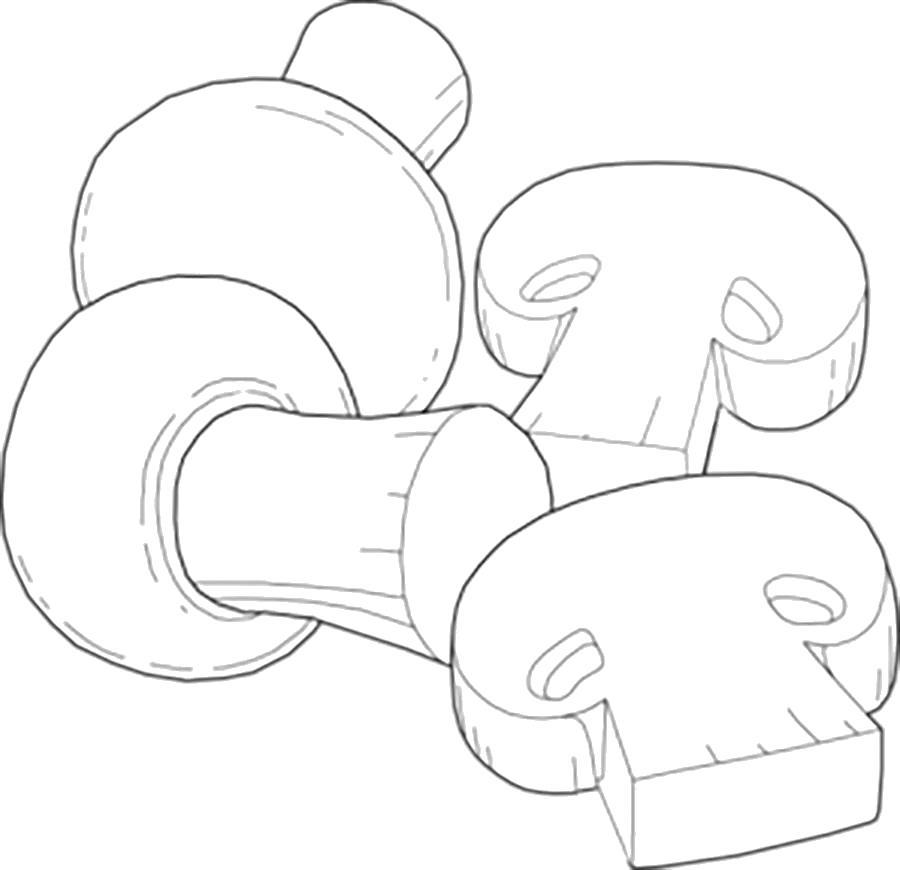 Раскраска  шаблон гриба грибы в разрезе шаблоны, шаблоны для детей. Скачать гриб.  Распечатать растения