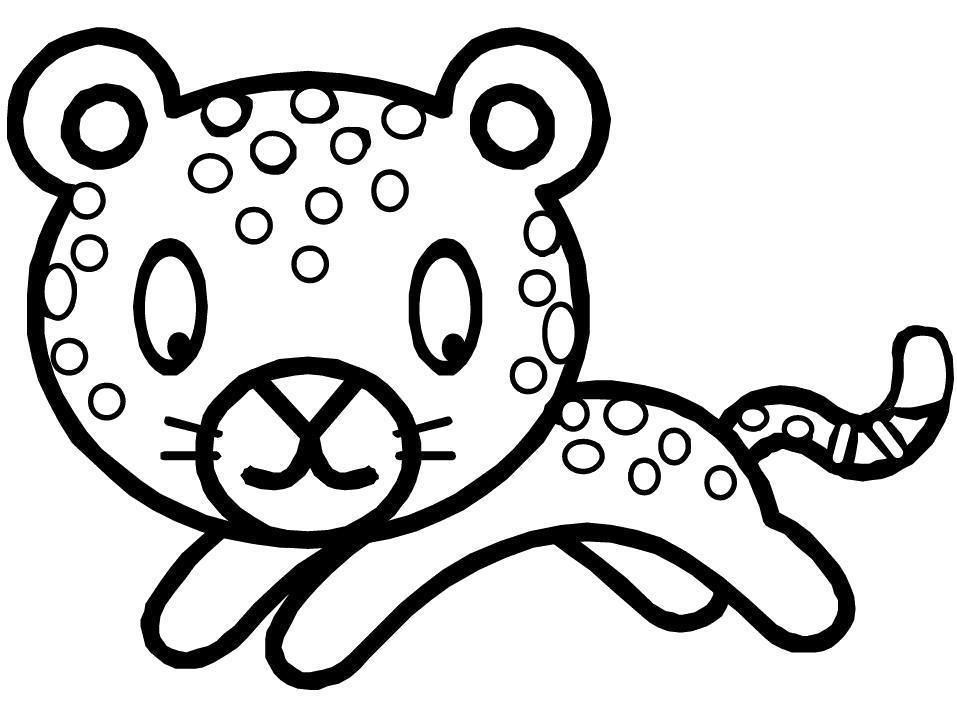Раскраска  Детеныш-леопард. Скачать .  Распечатать