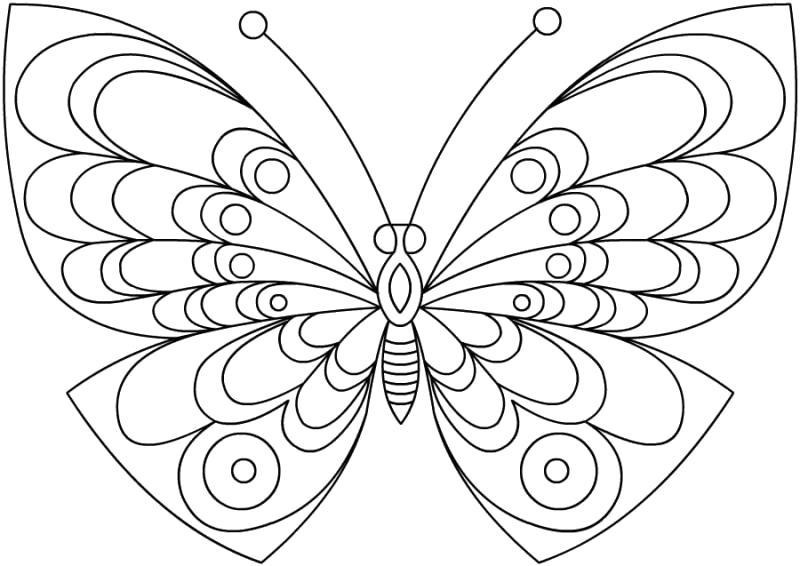 Раскраска Крылатая бабочка. Скачать .  Распечатать