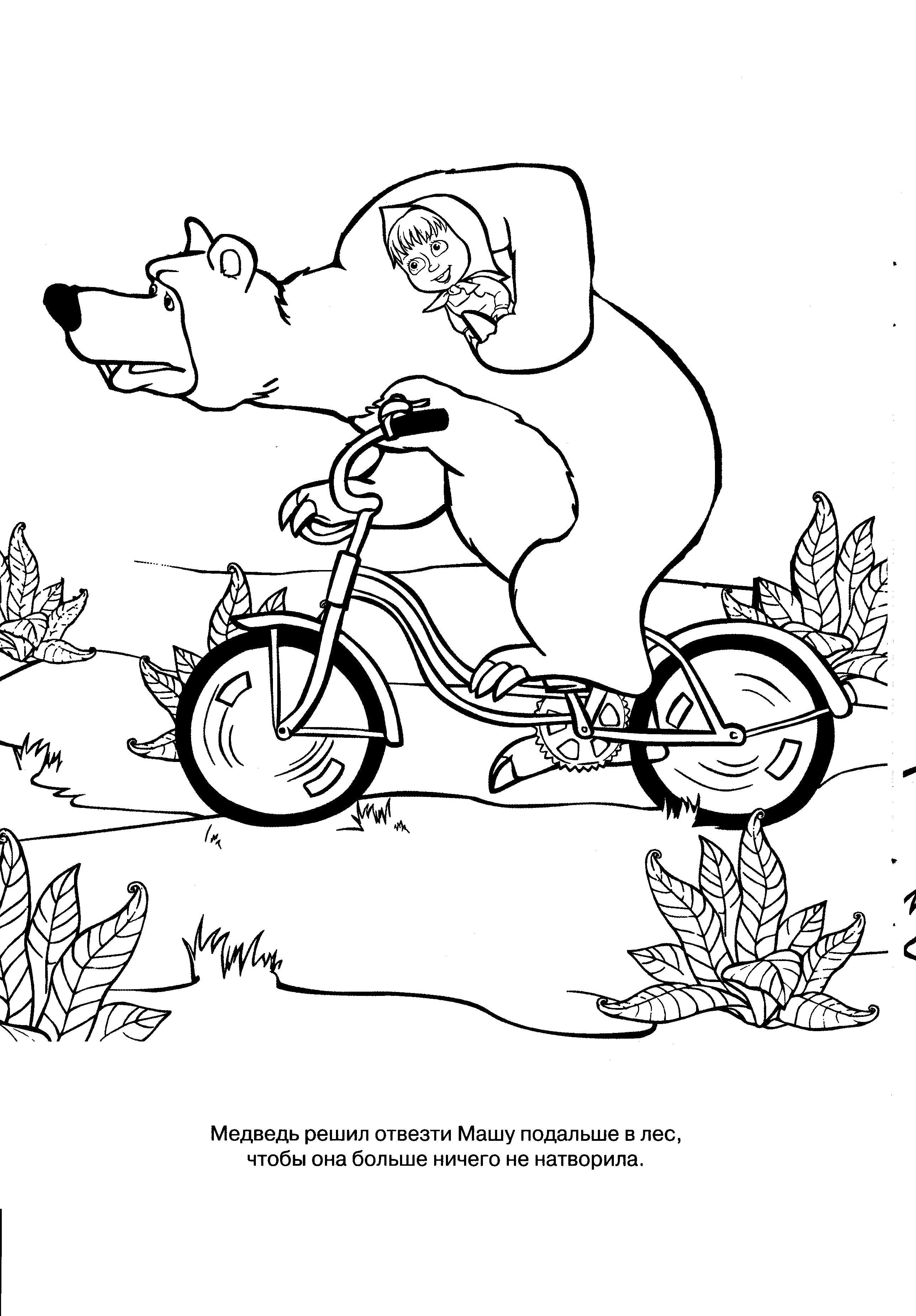 Раскраска медведь едет на велосипеде, миша везет машу. Скачать Маша и медведь.  Распечатать Маша и медведь