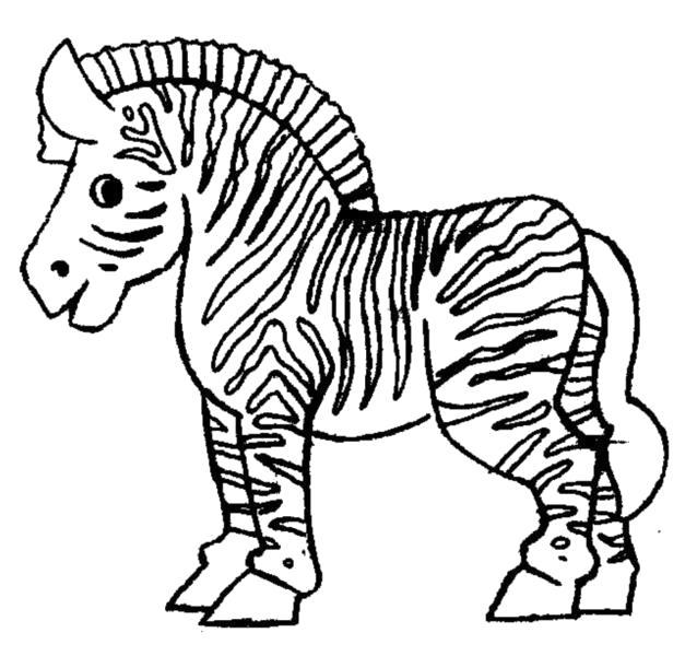 """Раскраска  """"зебра"""" скачать и распечатать бесплатно. Скачать зебра.  Распечатать Дикие животные"""