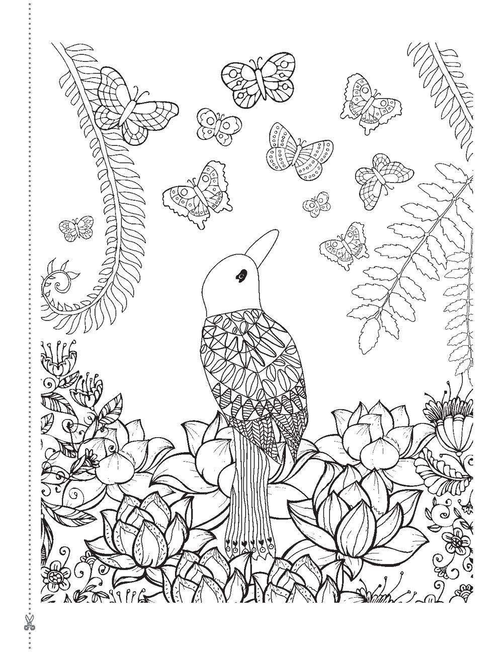 Раскраска Птица в саду. Скачать птицы, узоры.  Распечатать антистресс
