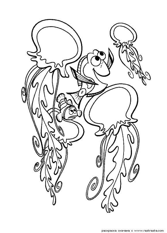 Раскраска  Медузы.  Разукрась картинки для детей из мультика, детский рисунок для раскрашивания, картинки для детей из мультфильма про рыбку Немо. Скачать немо.  Распечатать немо