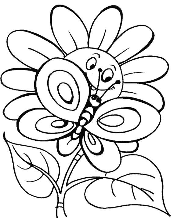 Раскраска Бабочка на ромашке. Скачать Бабочки.  Распечатать Насекомые