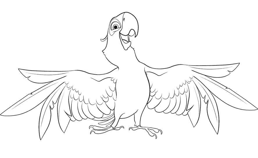 Раскраска Голубчик попугай, мульт Рио, попугай раскрыл крылья. Скачать Рио.  Распечатать Рио