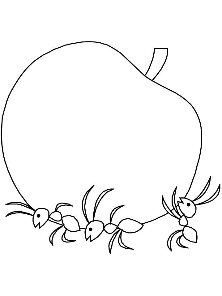 Раскраска  Муравьи несут яблоко. Скачать Муравей.  Распечатать Насекомые