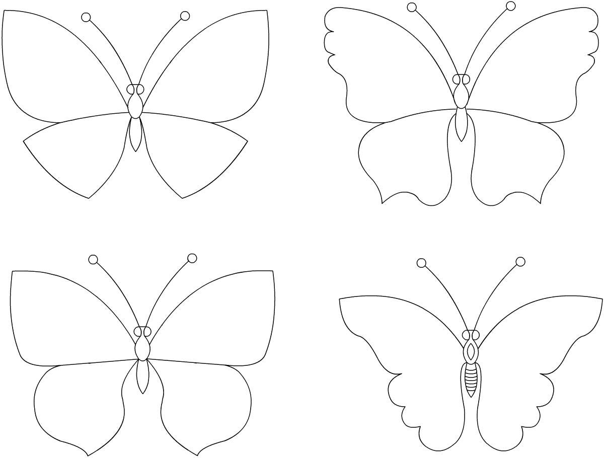 Раскраска контур бабочки. Скачать Бабочки.  Распечатать Бабочки