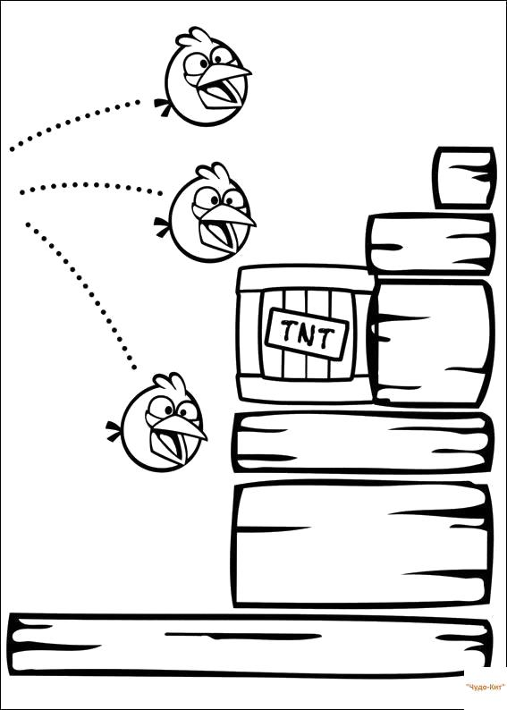 Раскраска компьютерные игры, Энгри Бердс. Скачать .  Распечатать