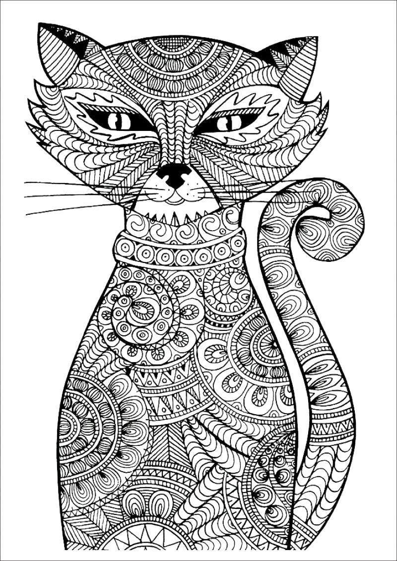 Раскраска Кошка -  для взрослых. Скачать кошка.  Распечатать Домашние животные