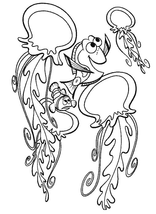 Раскраска Танцы с медузами  В Поисках Немо. Скачать Рыбы, медуза.  Распечатать Морские животные