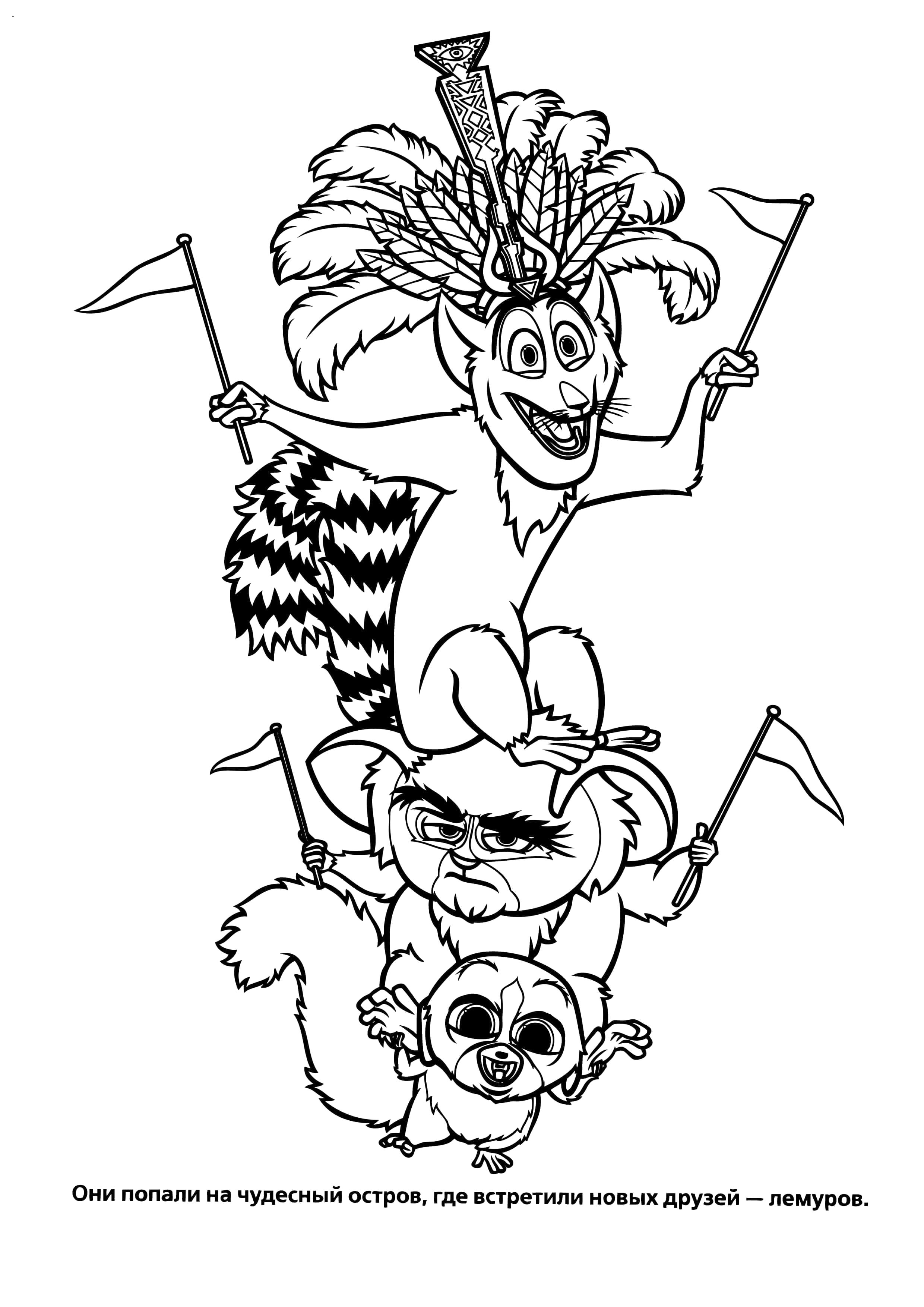 Раскраска  мадагаскар. Скачать Мадагаскар.  Распечатать Мадагаскар
