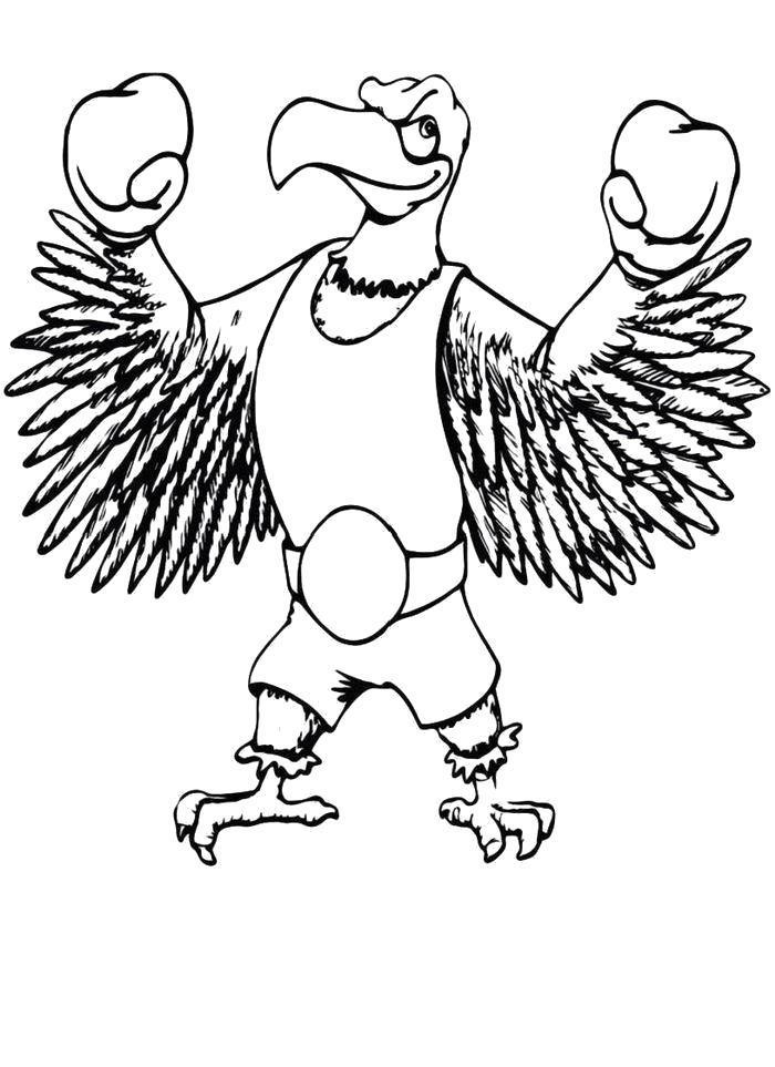 Раскраска - Орел-боксер. Скачать .  Распечатать