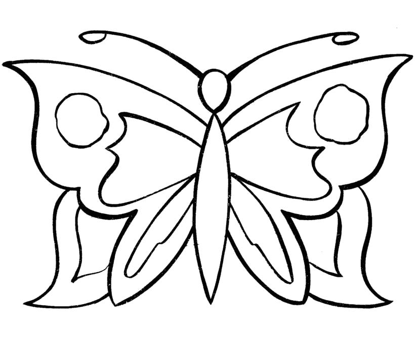 Раскраска Красивая бабочка с усиками. Скачать Бабочки.  Распечатать Бабочки