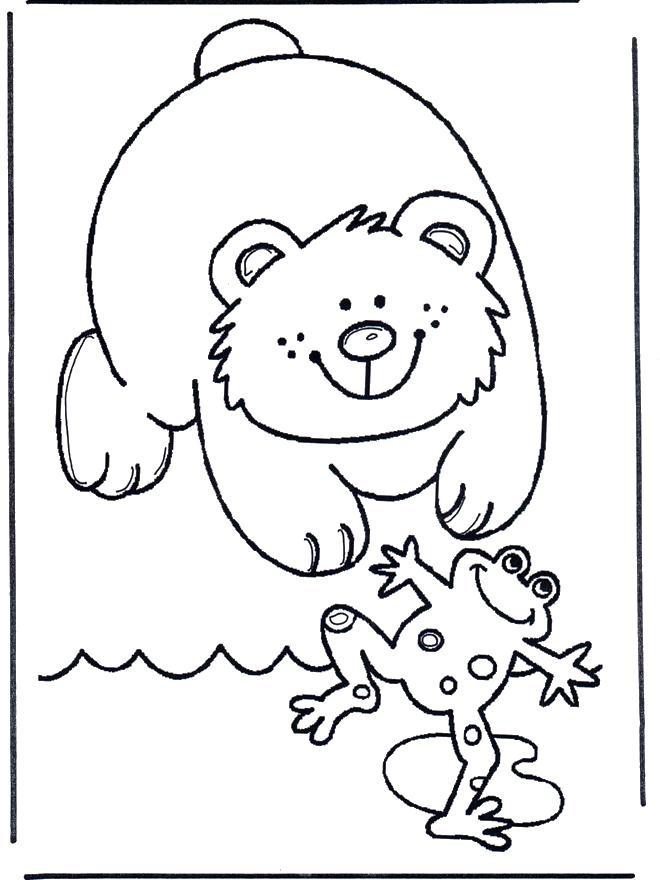 Раскраска  лягушка  для детей, медвежонок, лягушка. Скачать лягушка.  Распечатать лягушка