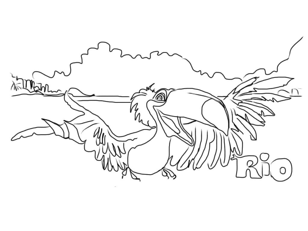 Раскраска попугай Голубчик, Голубой Ары, мульт Рио. Скачать Рио.  Распечатать Рио