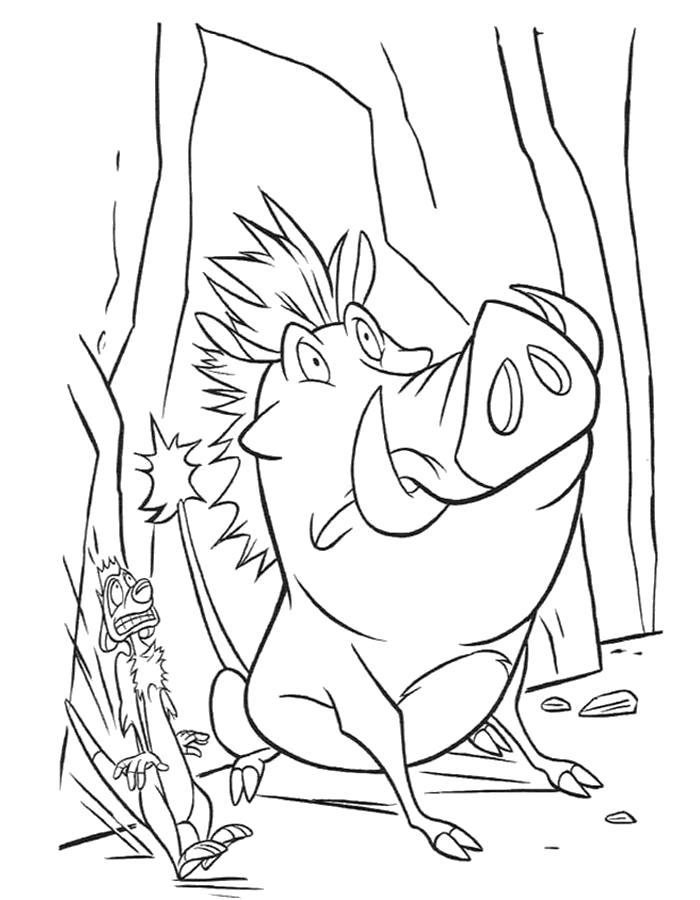 Раскраска  Тимон и Пумба. Скачать .  Распечатать