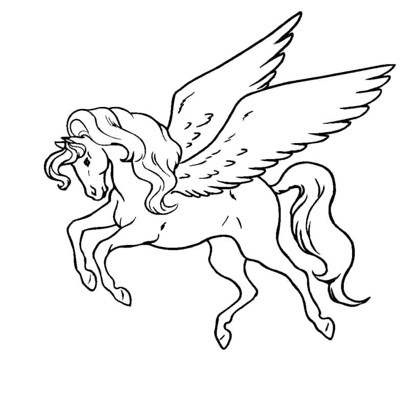 Раскраска Пегас. Скачать Лошади.  Распечатать Лошади