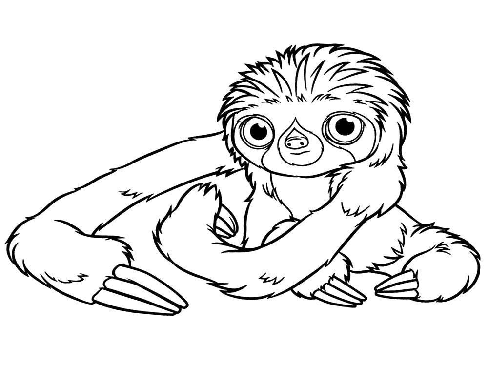 Раскраска Рисунки  семейки Крудс - ленивец. Скачать .  Распечатать