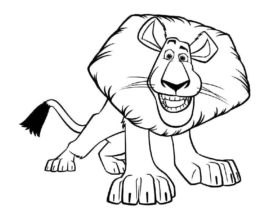 Раскраска Лев. Скачать Мадагаскар.  Распечатать Мадагаскар