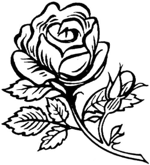 Раскраска  Солнечная роза. Скачать Цветы.  Распечатать Цветы