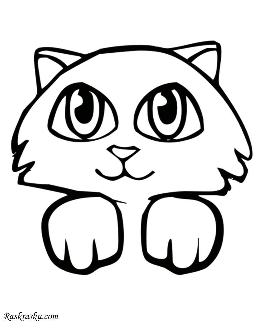 Раскраска Милый котенок. Скачать кот.  Распечатать кот