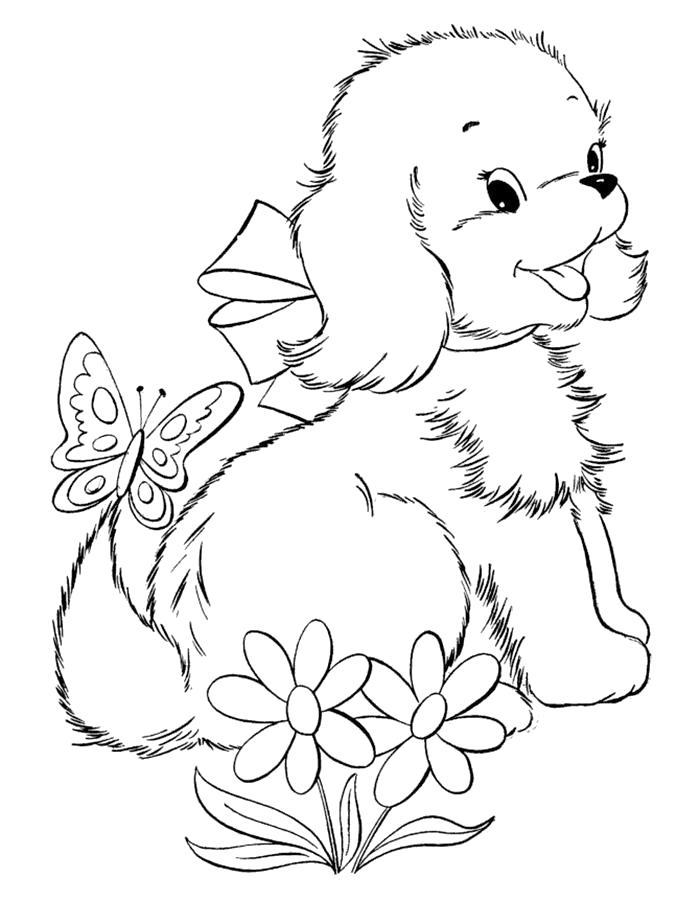 Раскраска  щенок с цветочками и бабочкой. Скачать Щенок.  Распечатать Щенок