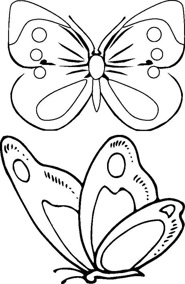 Раскраска Бабочка летит к цветку. Скачать .  Распечатать