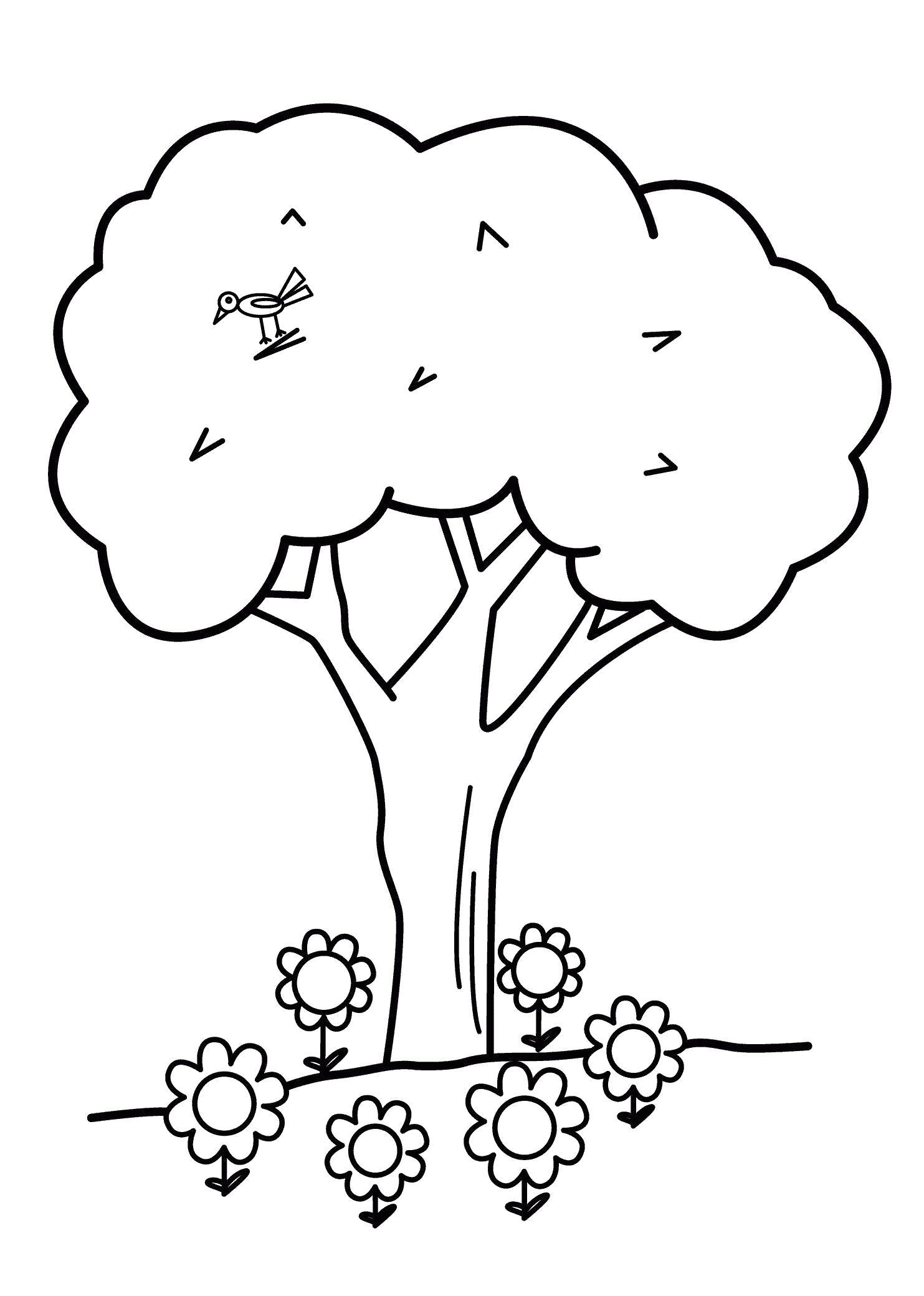 Раскраска Дерево с птичкой. Скачать деревья.  Распечатать деревья