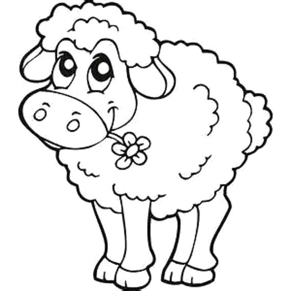 Раскраска Милая овечка. Скачать Овца.  Распечатать Овца
