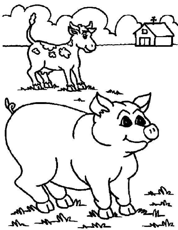 Раскраска Ферма и животные. Скачать .  Распечатать