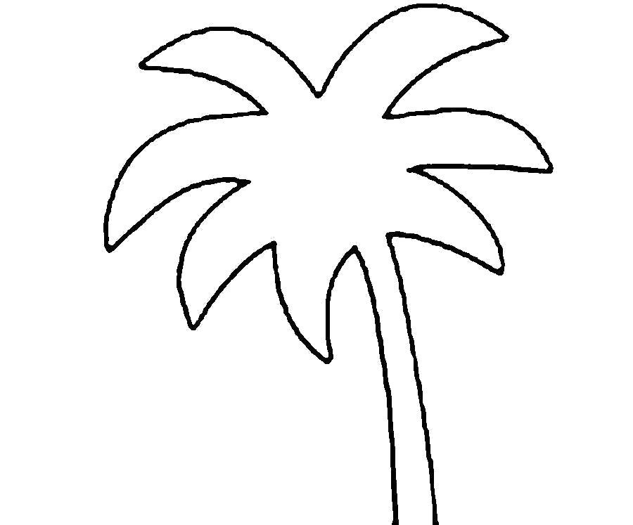 Раскраска  Деревья для вырезания из бумаги пальма. Скачать пальма.  Распечатать пальма