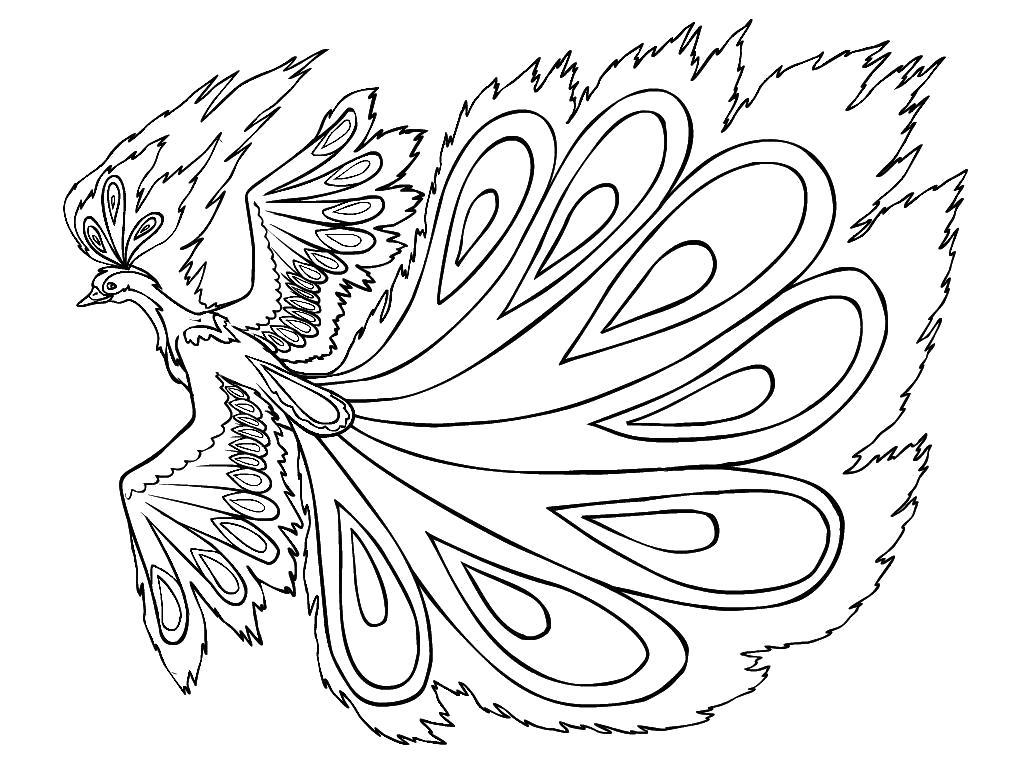 Раскраска Жар Птица. Скачать Жар птица.  Распечатать Жар птица
