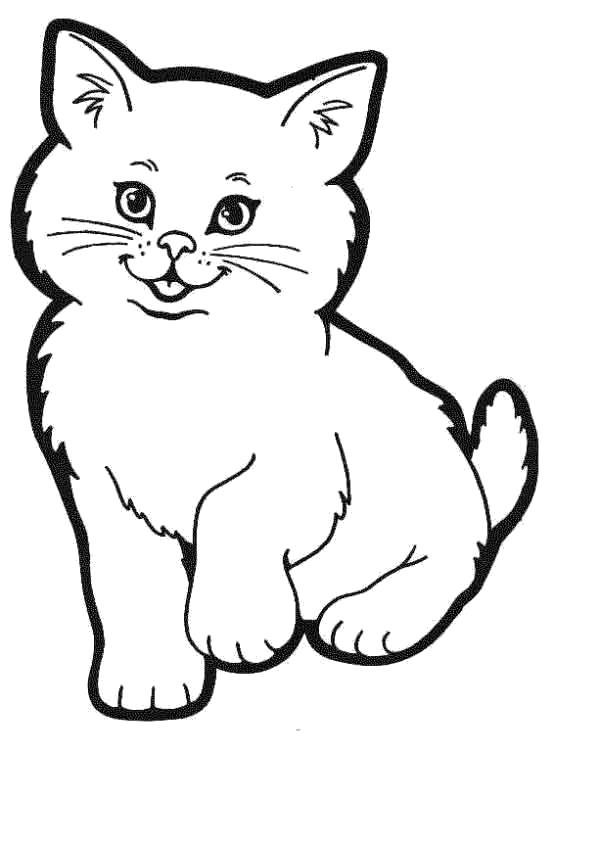 Раскраска Котёнок милашка. Скачать .  Распечатать
