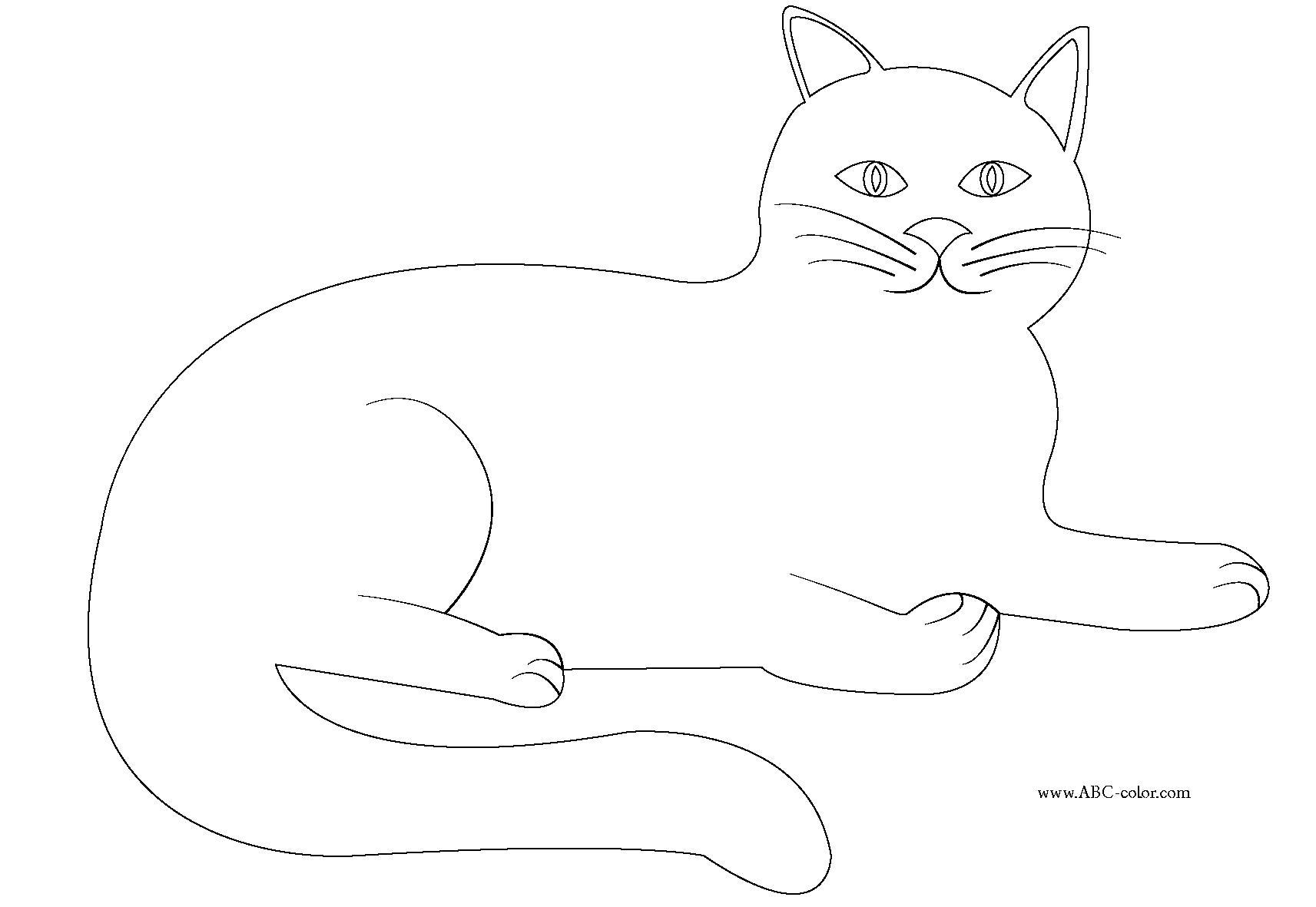 Раскраска кошка , кошечка лежит. Скачать кошка.  Распечатать кошка