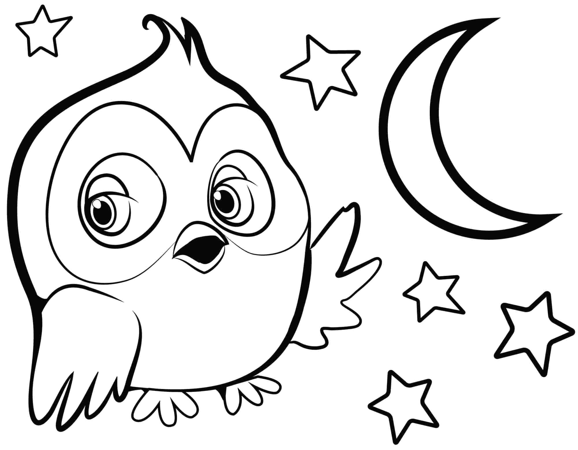 Раскраска сова  ночью среди звезд. Скачать Сова.  Распечатать Сова