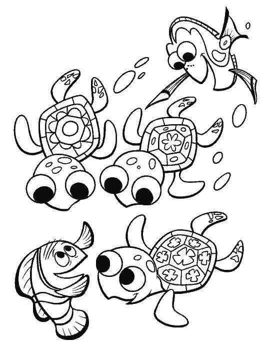 Раскраска Черепашки - друзья Немо  В Поисках Немо. Скачать в поисках Немо.  Распечатать в поисках Немо